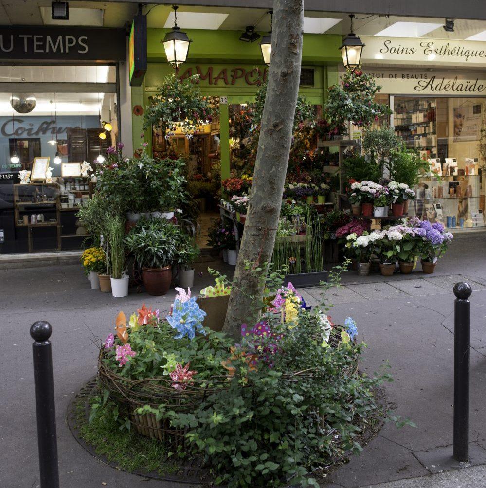 Permis de végétaliser, quand les urbains deviennent jardiniers