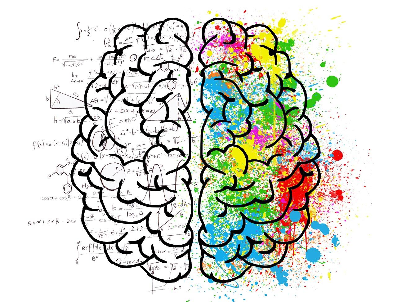 Cerveau. Quel travail malgré le handicap ?