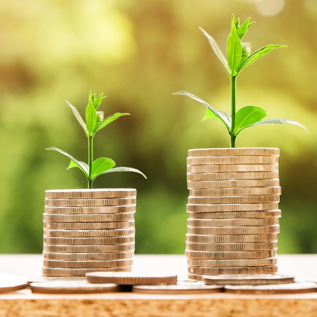 Eco-responsabilité : pourquoi les PME doivent s'y mettre