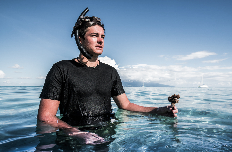 Adopte un corail grâce à Titouan